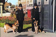 London Metropolitan, Police Box, Old London, Blue Box, Dr Who, Tardis, Historical Photos, Time Travel, Doctor Who