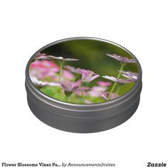 Flower Blossoms Vines Party Guests Friend Family Jelly Belly Tin