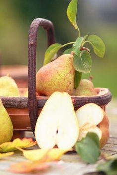 "Next: ""Autumn Pear Cottage"""