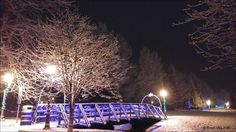 Christmas lights in the Steelhead Park. Photos taken on December 21, 2016 Houston, BC. Outdoor photos from around British Columbia, Photos by Brian Vike.