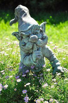 Shushing garden gnome