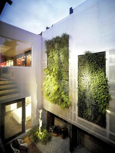The outdoor space of Melbourne residence by Morris Partnership with green walls by Fytogreen Australia, way back in 2009. This two-piece vertical garden is supported by an architectural statement wall to the courtyard, with views to it from most rooms. The foliage includes a mix of native grasses and ferns. More #greenwall ideas on the RSD Blog.