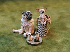 Sarah Hendry's Pug & Chihuahua in bag