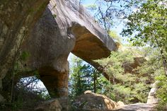 Sky Bridge at Red River Gorge, Ky. so beautiful.