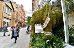 Chelsea in Bloom 2016 | Images of the beautiful floral-inspired displays | Flowerona