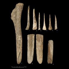 Archaeologists study tools made by Homo sapiens near Vladimir - The Archaeology News Network