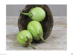 Apple Green Eggplant -No need to peel (100 Seeds) Extra-early, Very productive !