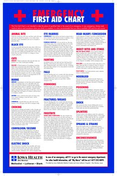 Printable+Emergency+First+Aid+Chart - My Medical Center 2020 First Aid Tips, Basic First Aid, Medical Jokes, Medical Advice, First Aid For Children, First Aid Information, Emergency First Aid, Family Emergency, Medical Brochure