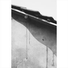 : still-life : Be Still, Still Life, Instagram Posts, Photography, Photograph, Fotografie, Photoshoot, Fotografia