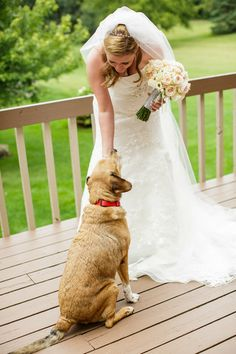 Photo-op for dog lovers {Yellow Diamond Events}
