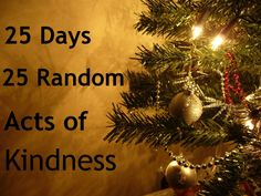 25 Acts of Random Kindness Challenge Our family is doing this for our December.