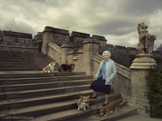 Queen Elizabeth with her beloved corgis and dorgies—Willow, Vulcan, Candy and Holly—on the steps of the East Terrace at Windsor castle.