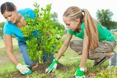 #Grants Program: Legacy, Inc. create environmentally responsible citizens. Due 9-25. http://www.getedfunding.com/c/product.web?nocache@12+s@M1vi6VXquxT4.+record@2222 … AL only
