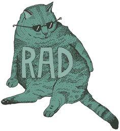 cats are rad.