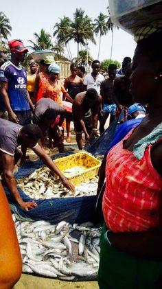 #Ghana#beach#kokrobite#fish#food#fisherman#work