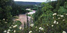 Oulangan kansallispuisto - Luontoon Finland. Pin #2. Canoeing. Oulanka National Park.