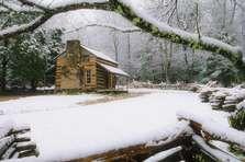 Bill Lea - Nature Photography  Cades Cove GSMNP