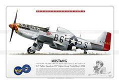 "P-51D ""Old Crow"" 1944 PP-01"