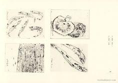 山本容子 Yoko Yamamoto 静物画 版画集 18