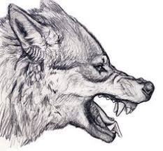 Imagini pentru dacian draco tattoo