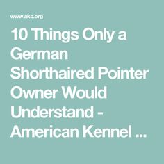 10 Things Only a German Shorthaired Pointer Owner Would Understand - American Kennel Club