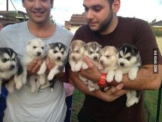 Arms full of cuteness!