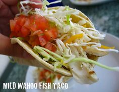 Wahoo's Fish Taco Recipe. Best fish tacos on the planet!!!