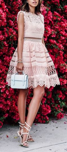 Blush lace dress.