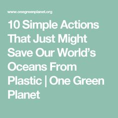 10 Simple Actions That Just Might Save Our World's Oceans From Plastic | One Green Planet