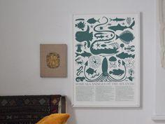 Sea Animals of the Atlantic Print - Banquet