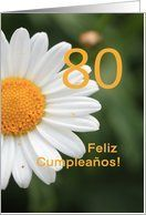80th Birthday card in Spanish, white daisy Card by Greeting Card Universe. $3.00. 5 x 7 inch premium quality folded paper greeting card. Find Non-English / Other Languages cards for everyone on your list at Greeting Card Universe. Make your loved ones feel special with a custom paper card. Allow Greeting Card Universe to handle all your Non-English / Other Languages card needs this year. This paper card includes the following themes: photo, photography, and studio por...