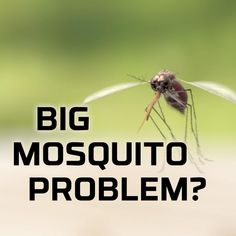 Mosquito Protection, Jacuzzi Outdoor, Rv Makeover, Home Fix, Fishing Videos, Camping Glamping, Fish Camp, Useful Life Hacks, Outdoor Entertaining