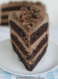 OMG Chocolate Chocolate Cake - OMG Chocolate Desserts