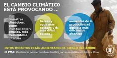 Si quieres conocer relación entre #CambioClimático y #HambreCero mira esto: