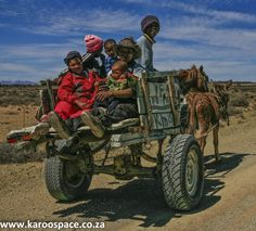 There's more to Karoo donkeys than a couple of hee-haws and a pair of twitching ears. Farm Animals, Animals And Pets, Render People, All About Africa, Subject Of Art, Art Walk, Equine Art, African Art, Beautiful World