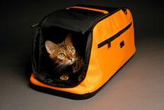 Сумка-переноска для кошек: Комфортное путешествие для питомца