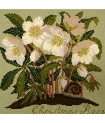 E.Bradley: Christmas Rose