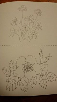 Lotus Flower Coloring Page Flower