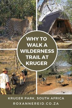 Kruger National Park, National Parks, African Vacation, Wilderness Trail, Wildlife Park, Slow Travel, Big 5, African Safari, What To Pack
