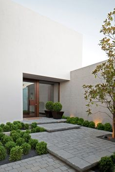 hardscape entry of overlapping large steps to handle elevation change using tumbled pavers with larger sizes on perimeter as trim, boxwood for green, contemporary concrete home, large glass & wood entry door, home by Jorge Figueroa Asociados
