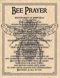 BEE Prayer Shaman Animal Spirit Poster Page  8 1/2 X 11 Native Am Celtic Wicca