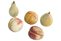 Peach And More Decorative Arts Antique Stone Alabaster Fruit With Eggs