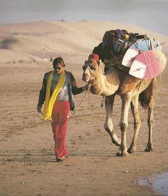 #Camel #Surfer