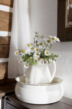 Daisies in pitcher