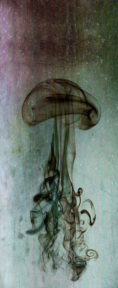 Jellyfish made of ink swirls / www.cjsillustration.com. I keep repinning from @Shannon Bellanca Henry's wall - such amazing science & nature pics!