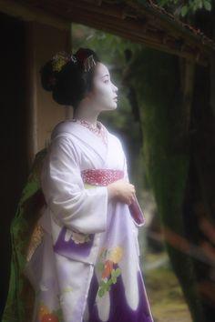 """芸妓さんと舞妓さんのブログ - Maiko Fukumi wearing a pastel purple kimono    She is now retired and I miss her so much. Her name literally means """"beautiful""""."""