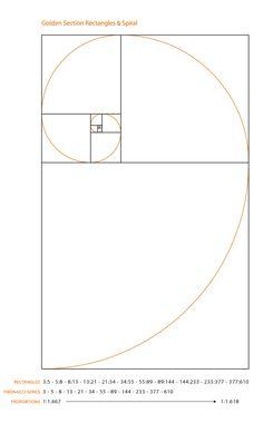 Tengo una obsesión enfermiza con la espiral áurea, el número de oro y la sucesión de Fibonacci.