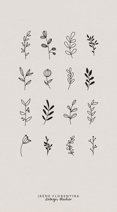 This bundle includes 50 unique botanical floral illustrations which you can use . - Drawings - This bundle includes 50 unique botanical floral illustrations which you can use for logos, invitati - Bullet Journal Writing, Bullet Journal Ideas Pages, Bullet Journal Inspiration, Journal Prompts, Journal Quotes, Illustration Botanique, Illustration Blume, Pattern Illustration, Floral Drawing