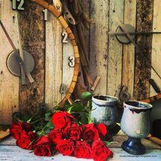 Tove Kristins Hage: Rosene setter virkelig, farge på hverdagen.
