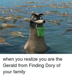Family, Finding Dory, and Girl Memes: when you realize you are the Gerald